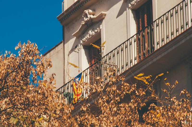 pequenos-monstros-tour-barcelona-comida-catala-devour-41