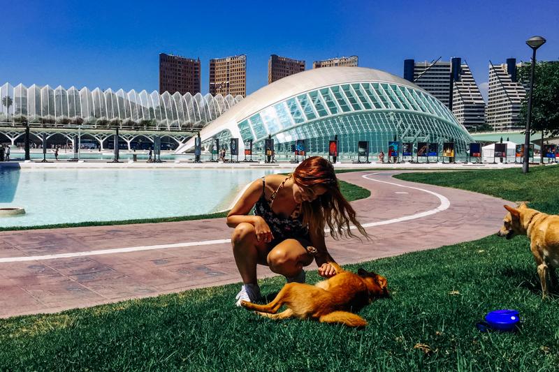 pequenos-monstros-valencia-espanha-ciudad-de-las-arts-cultura-5