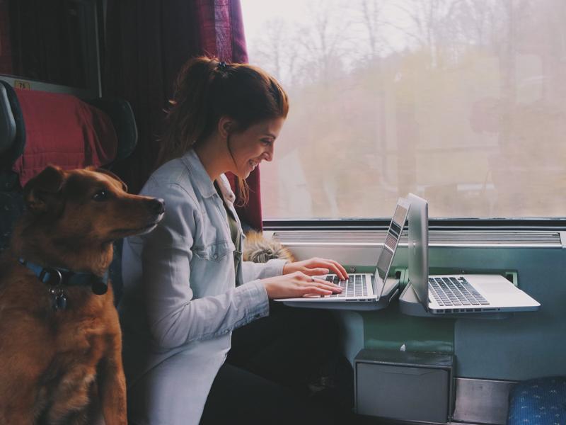 Viajar com cachorros de trem - Pequenos Monstros