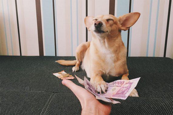 Como transferir dinheiro para a Alemanha
